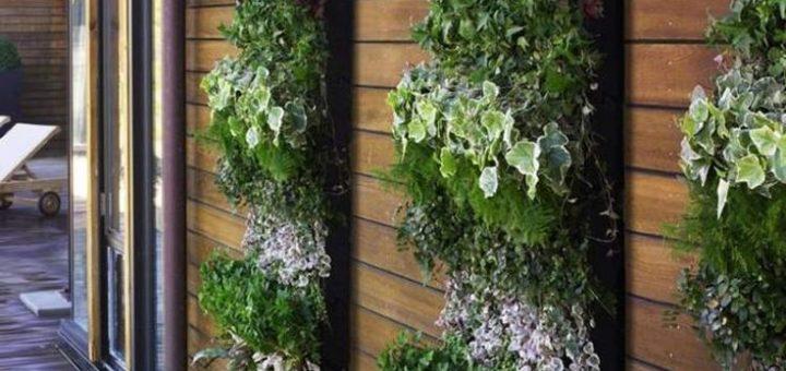 mur vegetal pas cher exterieur sofag. Black Bedroom Furniture Sets. Home Design Ideas
