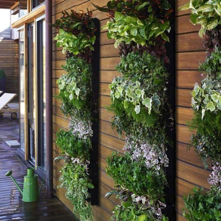construire un mur vgtal intrieur - Fabriquer Un Mur Vegetal Interieur