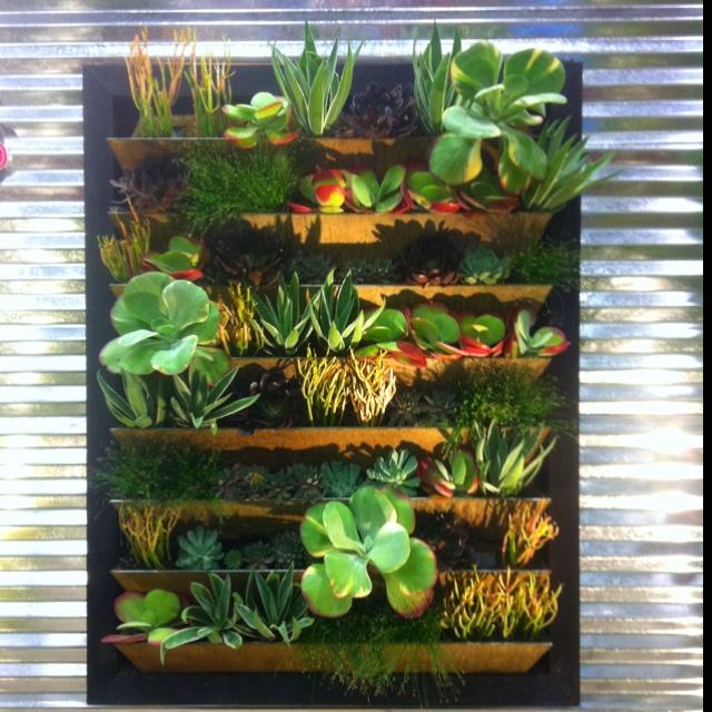 construire un mur vegetal d interieur sofag. Black Bedroom Furniture Sets. Home Design Ideas