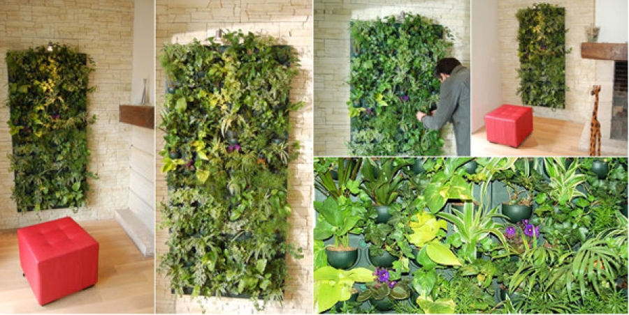 Fabriquer un mur v g tal sofag - Fabriquer un mur vegetal ...