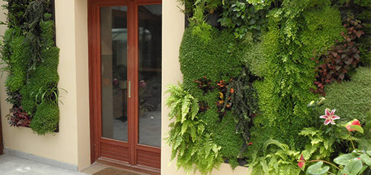 Maison en pierre archives page 8 of 32 sofag for Mur vegetal exterieur en kit