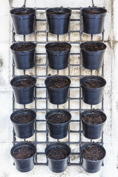support mur vegetal sofag. Black Bedroom Furniture Sets. Home Design Ideas