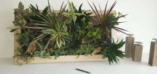 cadre vegetal pas cher simple tableau vgtalis design pas cher with cadre vegetal pas cher. Black Bedroom Furniture Sets. Home Design Ideas