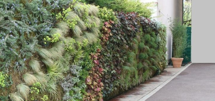 Mur vegetal exterieur sofag for Mur vegetal exterieur synthetique