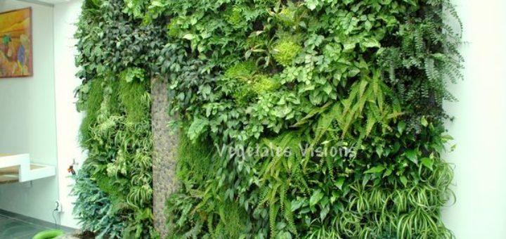 mur vegetal exterieur prix sofag