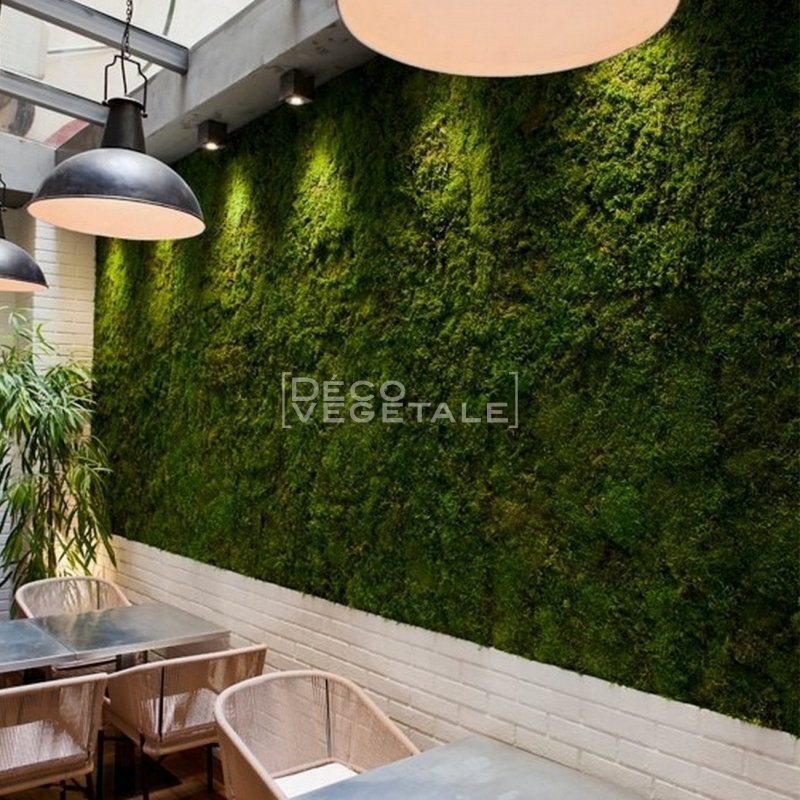mur vegetal interieur pas cher sofag. Black Bedroom Furniture Sets. Home Design Ideas