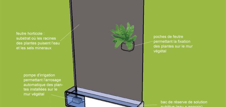 fabriquer un mur vgtal intrieur - Fabriquer Un Mur Vegetal Interieur