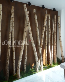 Tronc arbre decoration interieur sofag - Arbre deco interieur ...