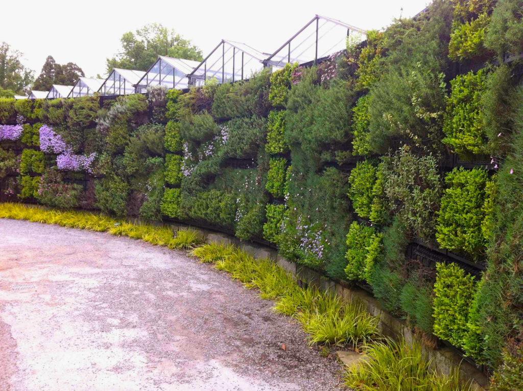 Mur vegetal exterieur plantes sofag - Jardin vertical exterieur ...