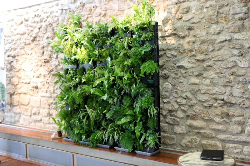 jardin vertical int rieur sofag. Black Bedroom Furniture Sets. Home Design Ideas