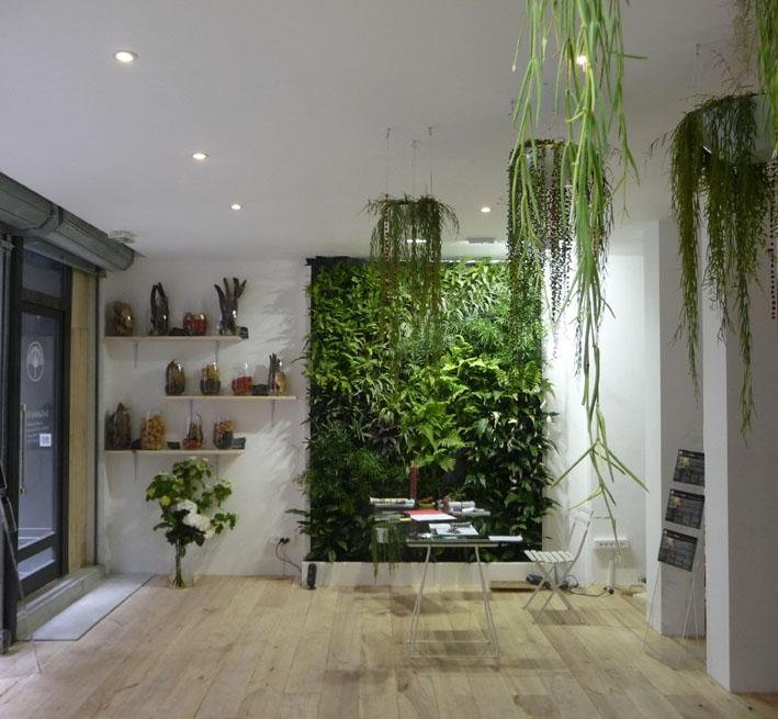 mur vegetal maison sofag. Black Bedroom Furniture Sets. Home Design Ideas