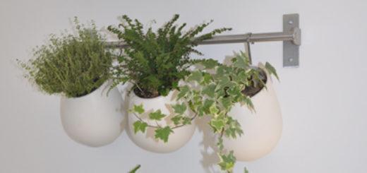 Plan maison moderne plain pied sofag for Mur vegetal interieur pas cher