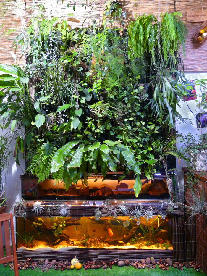 mur vegetal interieur avec aquarium sofag. Black Bedroom Furniture Sets. Home Design Ideas