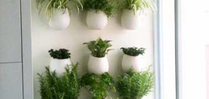 mur plante interieur sofag. Black Bedroom Furniture Sets. Home Design Ideas