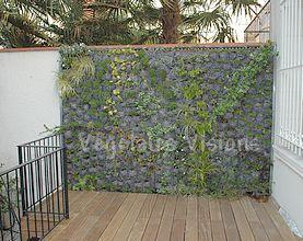 mur antibruit vegetal sofag. Black Bedroom Furniture Sets. Home Design Ideas