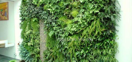 Beau plan de maison sofag - Prix mur vegetal exterieur ...