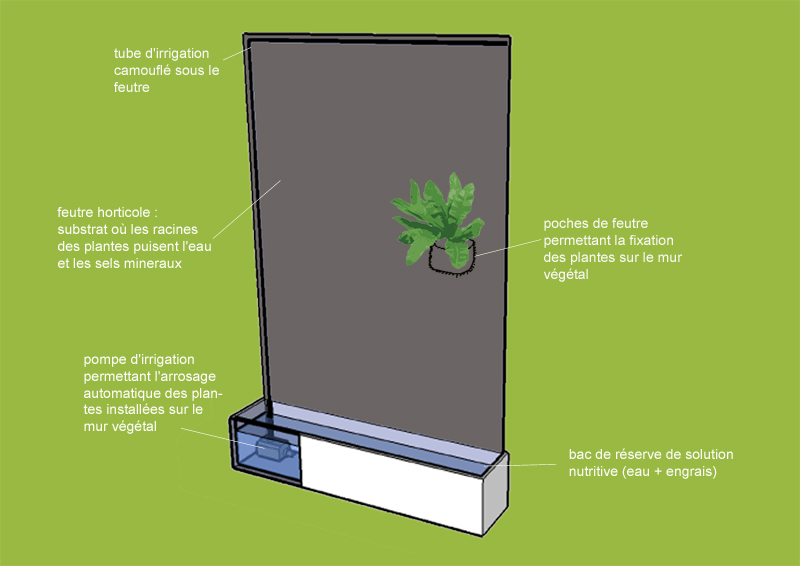 fabriquer un mur v g tal int rieur sofag. Black Bedroom Furniture Sets. Home Design Ideas